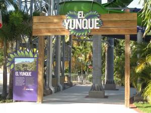 el-yunque-4